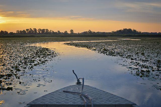 Októberben fotós Kánaán lesz a Tisza-tónál