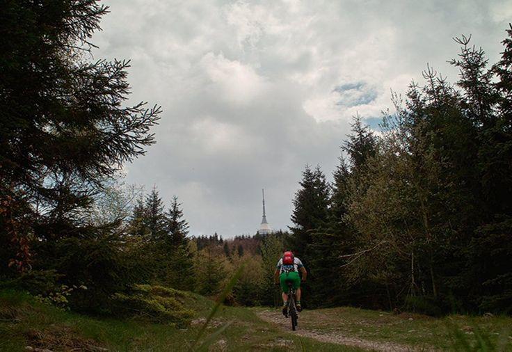 Downhill ride on professional tracks - Easy - Nice mountain bike tracks for beginners