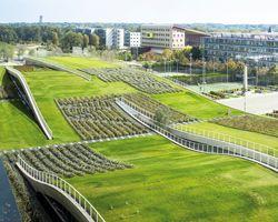 jean-philippe PARGADE en paris kampüsü dalgalı yeşil çatılar özellikleri