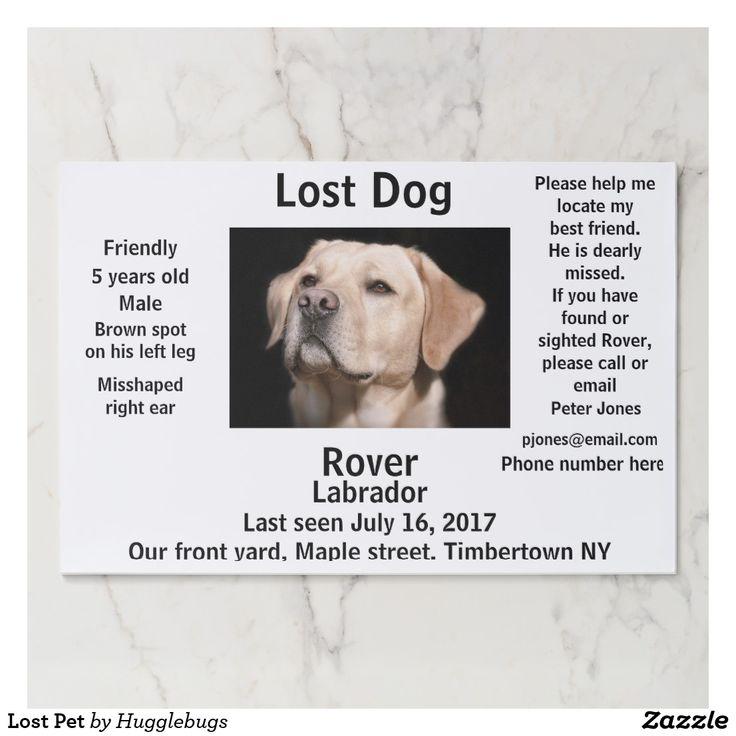 Lost Pet