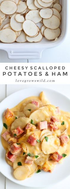 Thinly sliced potatoes and diced ham smothered in a creamy, super cheesy sauce and baked to perfection! Get the recipe at LoveGrowsWild.com