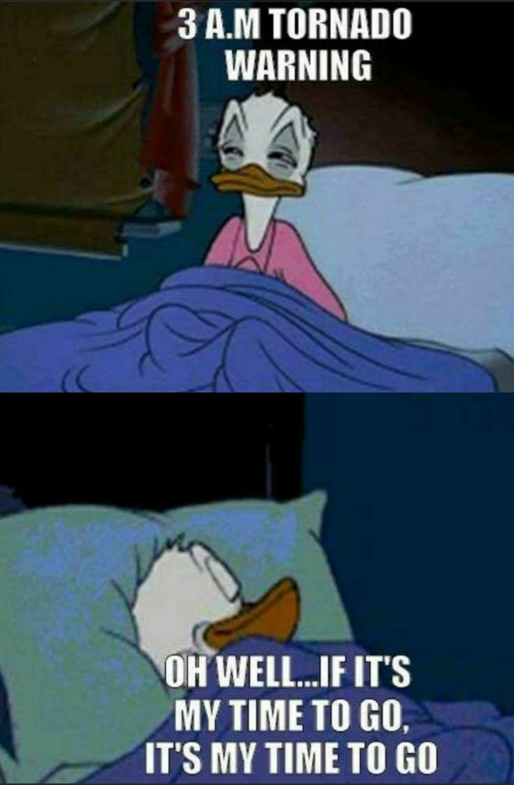 Donald Duck, tornado warning meme