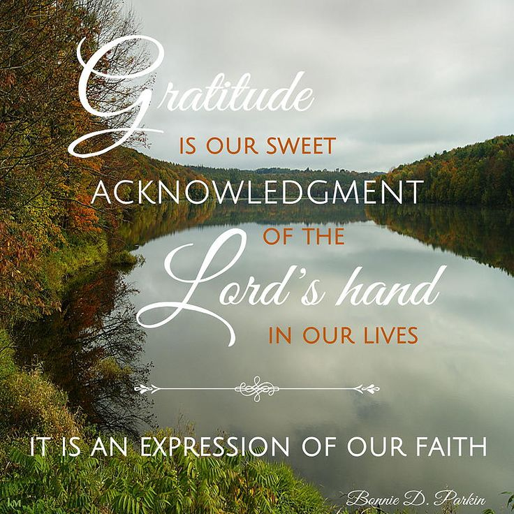 Deep Thanksgiving Quotes: 557 Best Gratitude Images On Pinterest