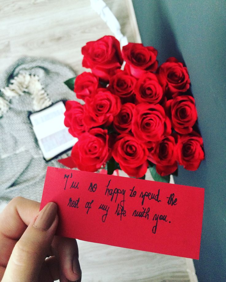 Red rosses