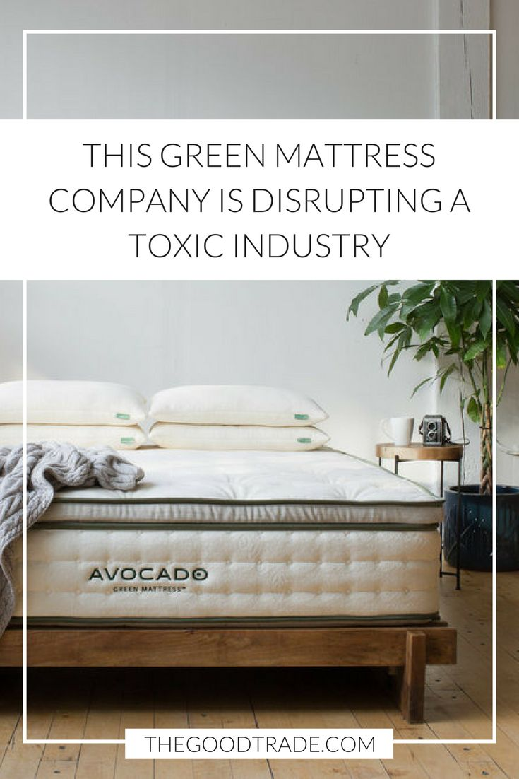 Avocado Mattress Is The New Green Company Disrupting A Worn Out Toxic Industry
