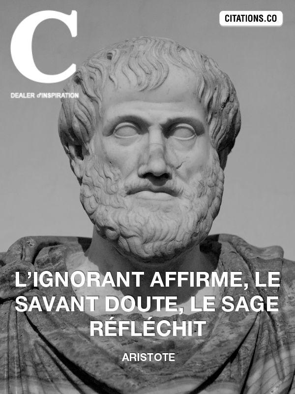 Aristote ou le philosophe par excellence . Il n'est pas un sophiste , ni un sceptique et encore moins un cynique . Aristote est bien plus l'ami de la vérité que l'ami de Socrate(selon ces mots )
