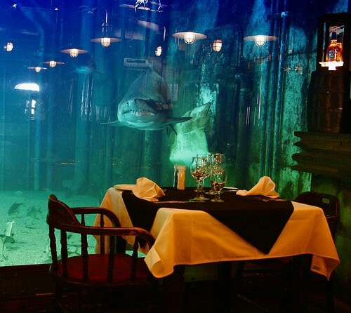 Dine with the fishes at Ushaka marine world, Durban Bookings 031 328 8065