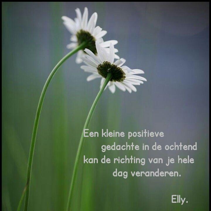 """""""Een kleine positieve gedachte in de ochtend, kan de richting van je hele dag veranderen."""" - Elly Haaksman."""