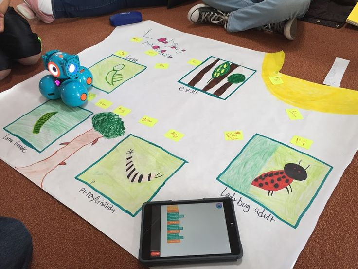 STEAM Ideas: 3rd Grade Dash Robot Life Cycle Exhibition Projects