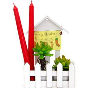 Plants N Candles Perfect gift hamper for the occasion of Christmas. Rs 1299/- http://www.tajonline.com/gifts-to-india/gifts-X1428.html?aff=pint2014/