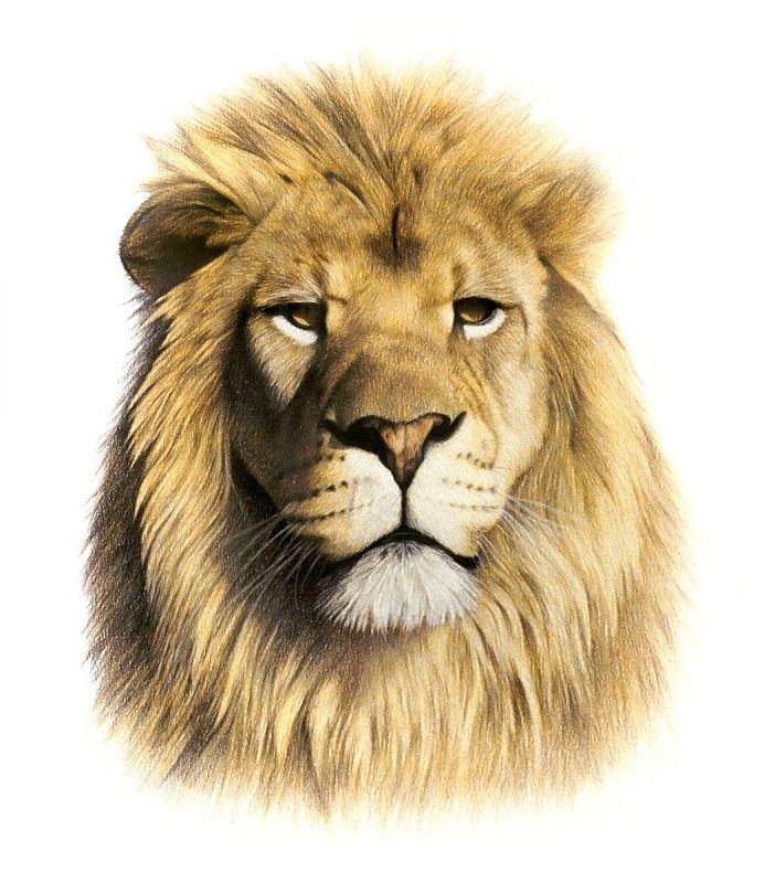 Horoskop: Das Liebesgeheimnis des Löwe-Mannes - Astrotypologie