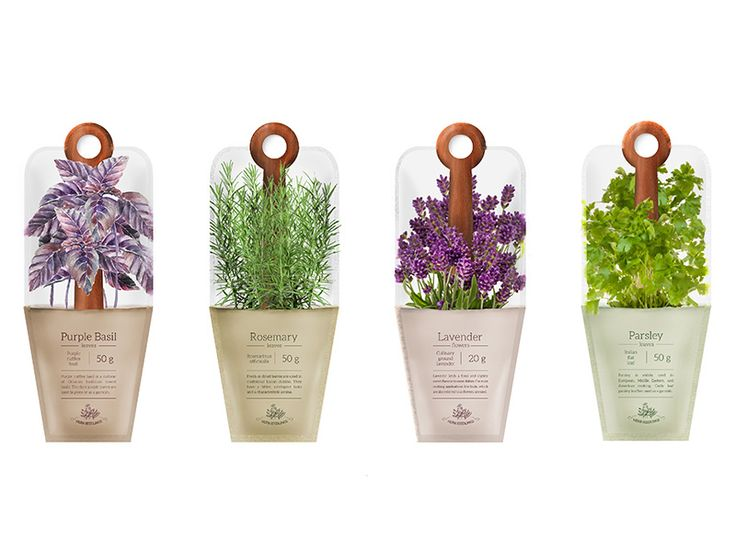 Package design for spices and herbs. Structural design of sachets.