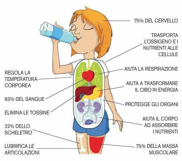 L'acqua (H2O) è l'elemento della vita. È importante assumere almeno  2 lt di acqua al giorno, per mantenere in perfetta forma e funzionalità  il nostro organismo. Impariamo ad assumerne la giusta quantità ogni giorno. Un trucchetto, che consiglio sempre alle mie #GuerriereInarrestabili  è di berne almeno 1 bicchiere ogni ora. Così da assumerne la giusta quantità.  E voi?  Ricordate di bere almeno 2 lt di acqua al giorno??? #acquafontedivita #trucchettosalutare