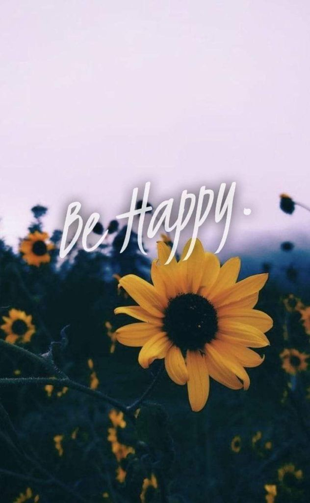 11 Beautiful Sunflower Wallpaper For Iphone Salmapic Sunflower Iphone Wallpaper Sunflower Wallpaper Flower Quotes