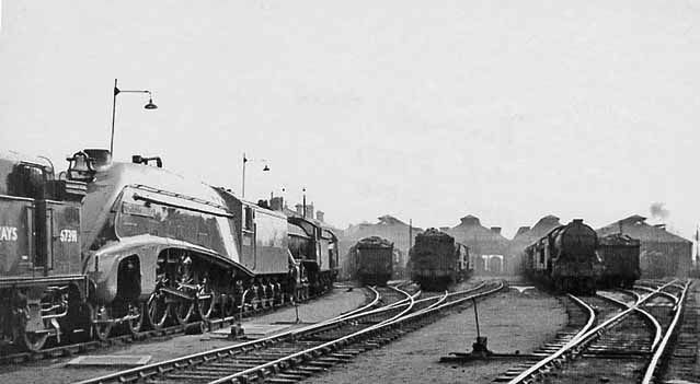 Doncaster Locomotive Depot. View SE in the yard at the north end of the Shed, which at that time (1949) had 12 through roads. Therefore this very important Divisional Main Depot (coded 36A by BR) was able to house a substantial proportion of its allocation of 182 under cover - in spite of appearances, when it was a Sunday. The Depot provided motive power for much of the passenger and freight traffic on both the ex-Great Northern East Coast Main Line and the subsidiary main lines to Leeds and…