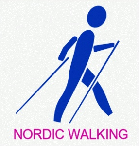What You wish to Know About Nordic Walking