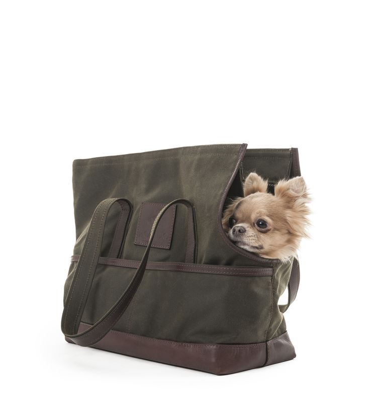 POLDO DOG COUTURE - FABRIC BAG/CARRIER Made of leather and cotton with two external pocket. Water-repellent fabric protects the dog from the rain. #poldodogcouture #poldo #dog #couture #dogbag #carrier #dogoutfitters