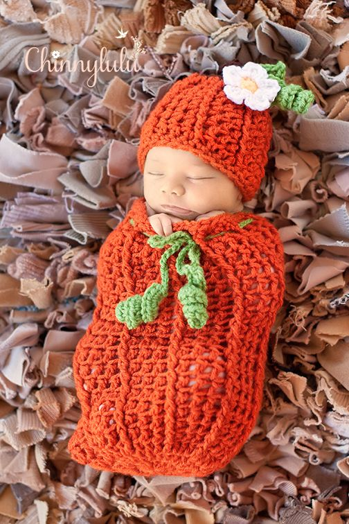 pumpkin pie, chinnylulu