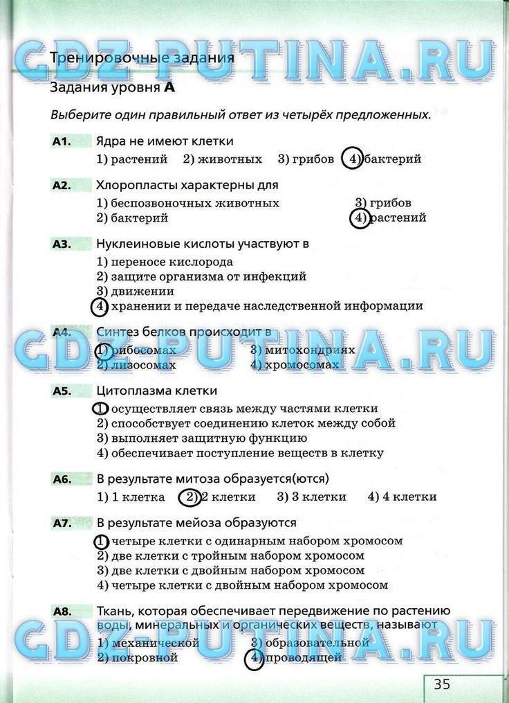 Уроки русского языка в 8 классе книга для учителя г а ...
