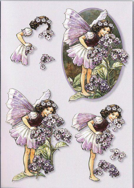 Fairy 3d