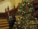 Pendley Manor Christmas Party Venue in Tring, Hertfordshire