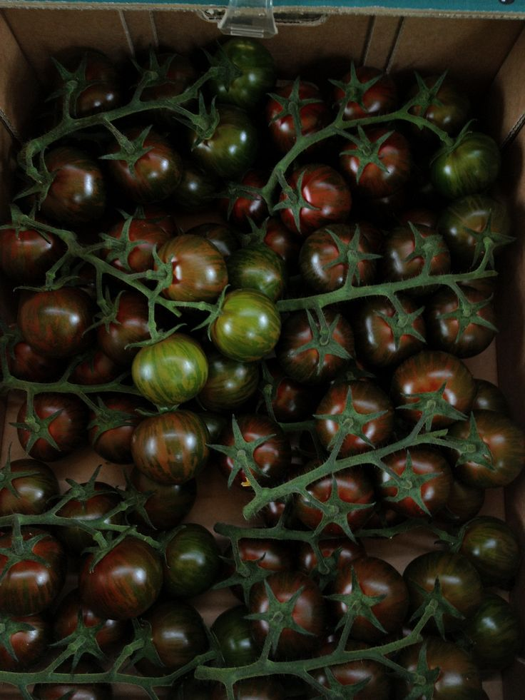 country market, black tomatoes from my book Particular Delights, reprint by Grub Street Publishing, buy it on Amazon