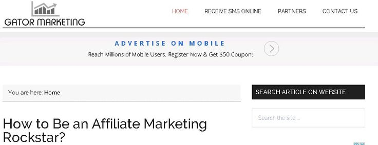How to Be an Affiliate Marketing Rockstar? - GATOR MARKETING http://www.gator-marketing.com