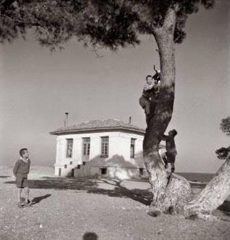 Αγόρια σε παιδόπολη. 1948. Βούλα Παπαϊωάννου,  Φωτογραφικά Αρχεία του Μουσείου Μπενάκη.