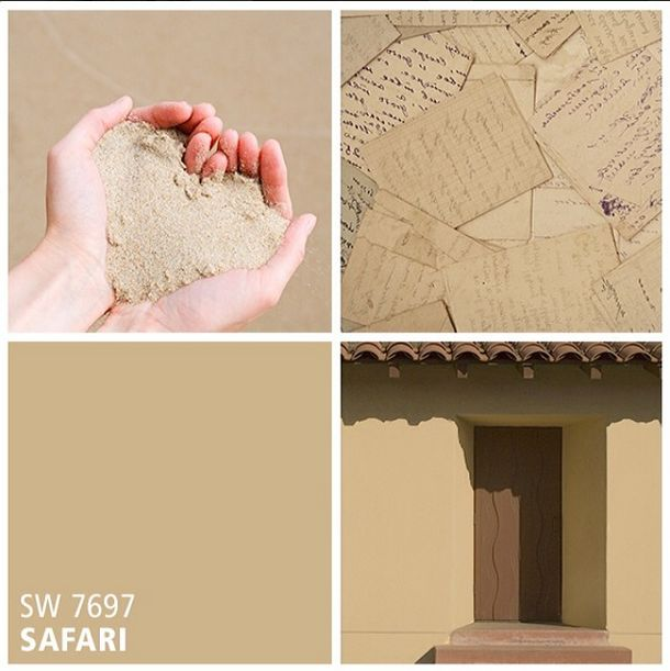 Sherwin Williams Neutral Paint Color Safari Sw 7697