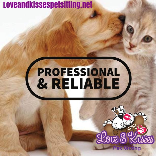 Going away for 4th of July? Our pet sitting service will make sure your pets get a holiday too! http://www.Loveandkissespetsitting.net