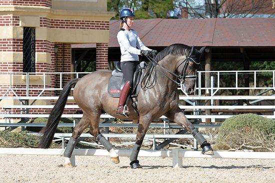 Charlotte Dujardin – Dressage at Jerez | The Horse Magazine