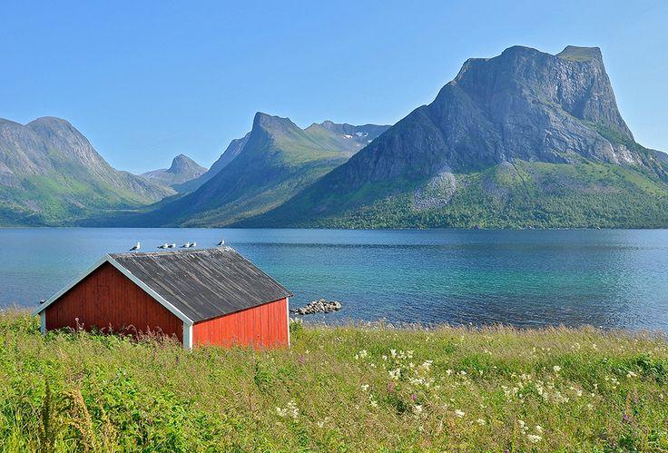 На острове Сенья #Norway #Senja