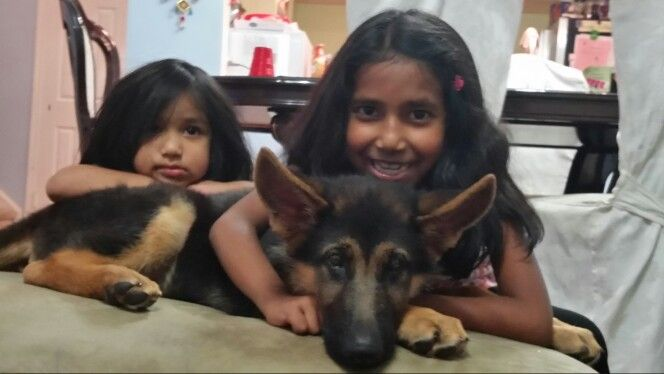 My daughters Zahra and Farrah and my puppy Max