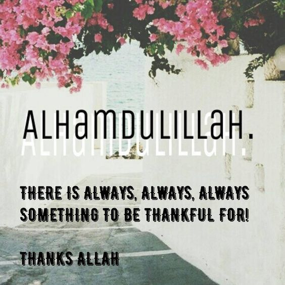 Have you said Alhamdulillah today?