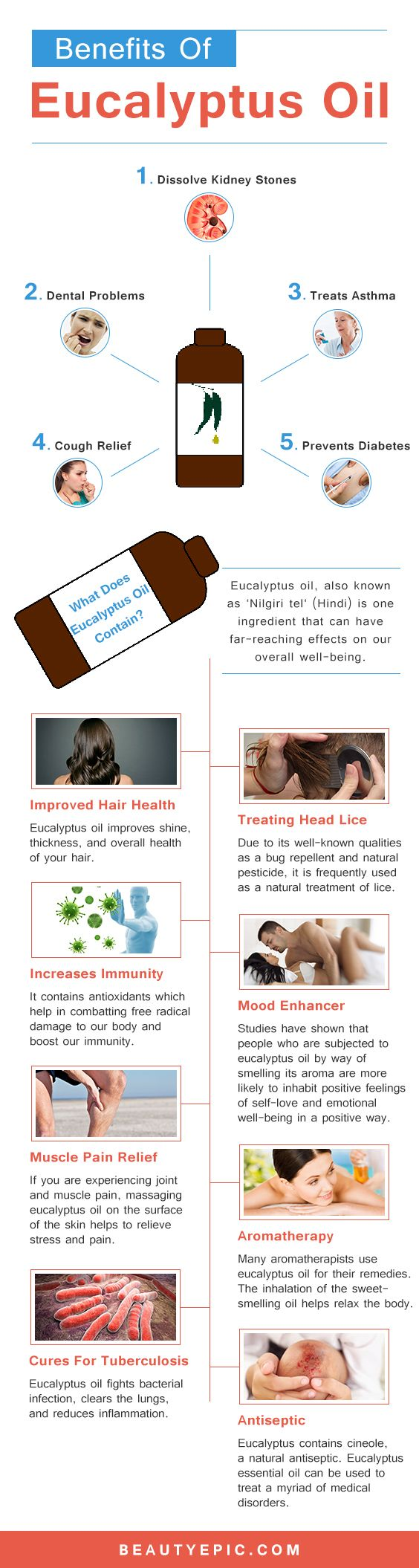 Top 20 Uses and Benefits of Eucalyptus Oil