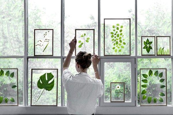 DIY// cuadros con hojas y flores