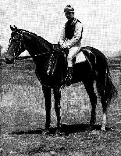 Carbine, outstanding racehorse and sire. Winner of the Melbourne Cup