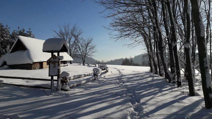 Zdjęcie: Zaśnieżona bacówka w Pieninach #zima #Pieniny