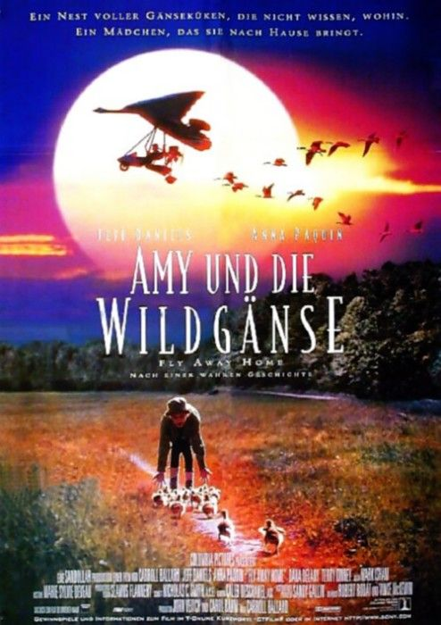 Poster zum Film: Amy und die Wildgänse
