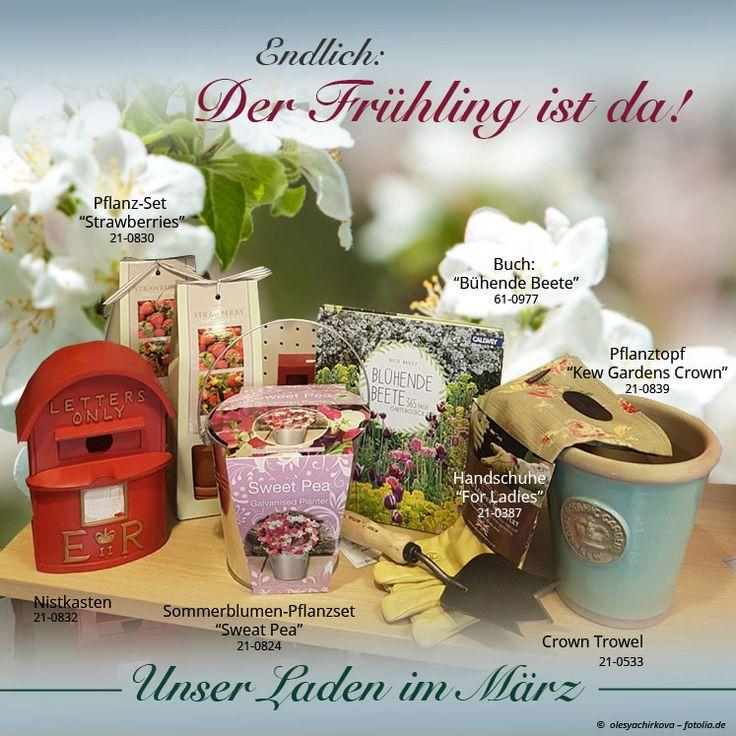 Der Frühling ist da – auch bei uns im Laden in Meckenheim!
