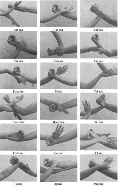 Wing Chun kung fu hands.  http://kungfumovieshop.com