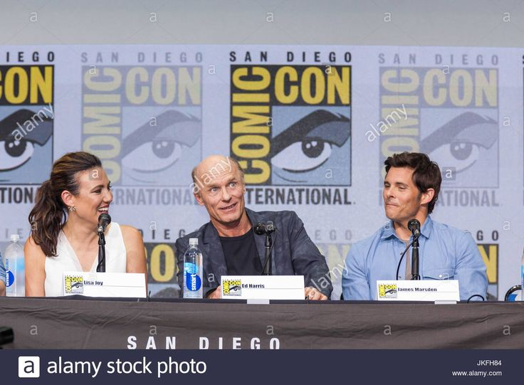 Download this stock image: San Diego, US. 22nd July, 2017. Day three in Hall H. West World Panel.The series-created, executive produced, and written by Jonathan Nolan and Lisa Joy .Cast panelists include Ben Barnes as Logan, Ingrid BolsÂ¿ Berdal as Armistice, Ed Harris as the Man in Black, Luke Hemsworth as Stubbs, James Marsden as Teddy, Thandie Newton as Maeve, Simon Quarterman as Lee Sizemore, Rodrigo Santoro as Hector, Angela Sarafyan as Clementine, Jimmi Simpson as William, Tessa…
