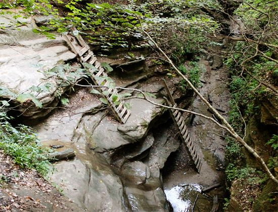 Turkey Run State Park (Marshall, IN) - Trail 3, my favorite state park and hiking trail in Indiana.