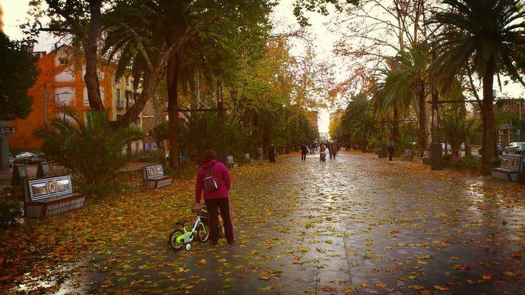 Paseo de Linarejos en la mañana de un domingo 16 de diciembre de 2012.