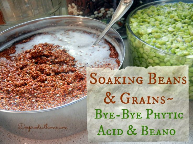 Soaking Beans and Grains ~ ByeBye Phytic Acid and Beano,