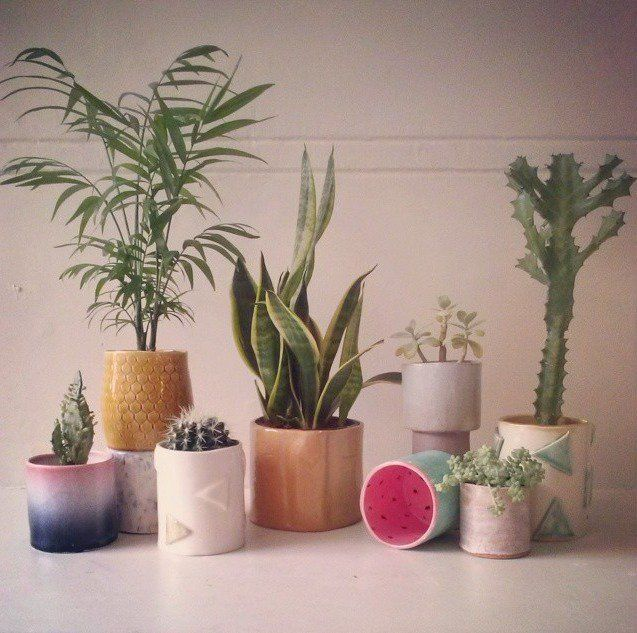 Stunning planters from wundaire