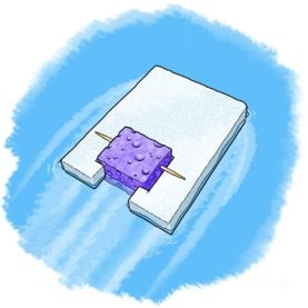 Surface Tension Science: Build a Raft Powered by Soap - has water strider connection