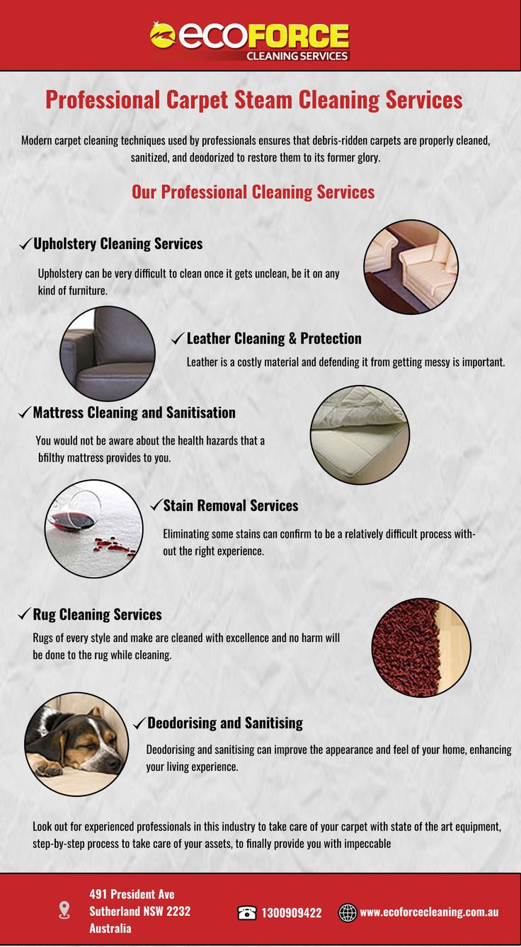 Using eco-friendly methods of cleaning, professional carpet steam services steam-clean dirty, grimed, stained carpets and restore them to their former glory.
