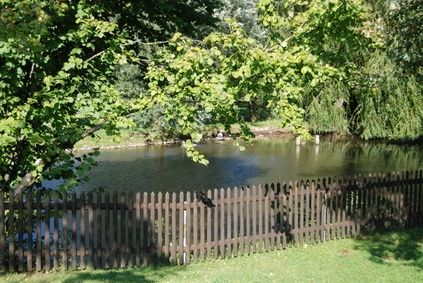 How to Make the Water Clear in a New Farm Pond