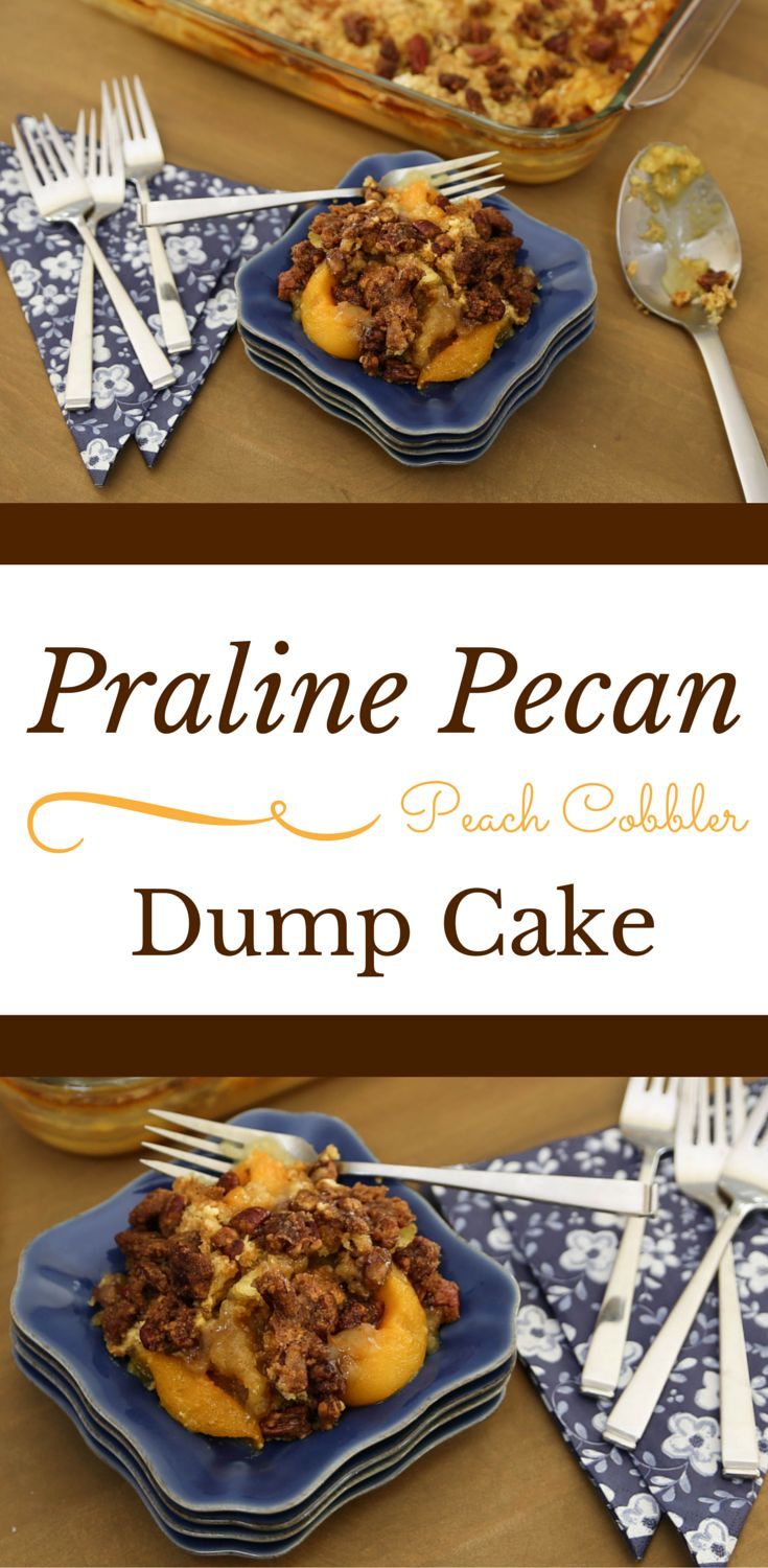 For Praline Pecan Peach Cobbler Dump Cake, prepare as recipe directs, except in a small bowl, combine ¼ cup melted butter, 1/2 cup packed brown sugar and 1½ cups chopped pecans; sprinkle over butter before baking. Click for full recipe.